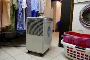 Feuchter Keller - das Problem kennen viele. Ein Luftentfeuchter kann Abhilfe schaffen. (Bildrechte: FRAGDENSTEIN.DE/ Stein)