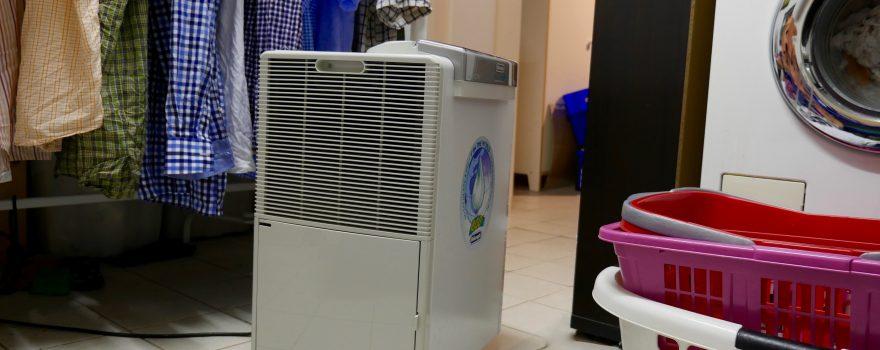 """Das Problem """"feuchter Keller"""" kennen viele. Ein Luftentfeuchter kann Abhilfe schaffen. (Bildrechte: FRAGDENSTEIN.DE/ Stein)"""